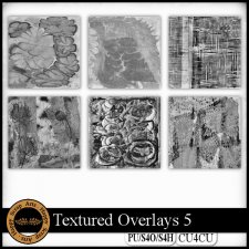 Textured Overlays 5 CU4CU by Happy Scrap Art