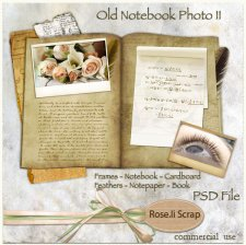 Old Notebook Photo II by Rose.li