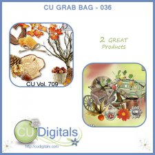 CU Scrap Grab Bag 036