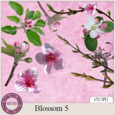 EXCLUSIVE Blossom 5 mini kit by Happy Scrap Arts