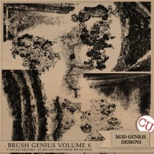 Brush Genius Volume Six by Mad Genius Designs