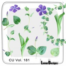 CU Vol 181 flowers by Lemur Designs
