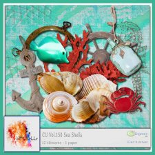 Vol 150 Sea Shells Elements EXCLUSIVE bymurielle