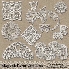 Elegant Lace Brushes by Karen Stimson