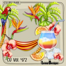 CU Vol 472 Summer Beach by Lemur Designs