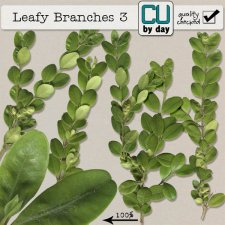 Leafy Branches 3 - CUbyDay EXCLUSIVE