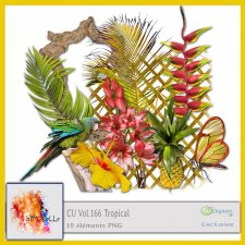 Vol 166 Tropical EXCLUSIVE bymurielle