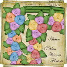 Action - Ribbon Frames Flowers by Rose.li