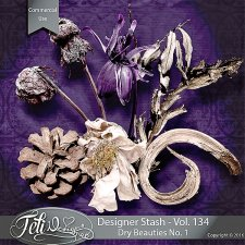 Designer Stash Vol 134 - Dry beauties No 1 by Feli Designs