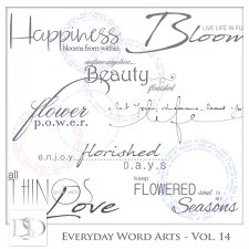 Everyday Word Arts Vol 14 by D's Design
