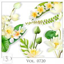 Vol. 0720 Nature Floral Mix by D's Design