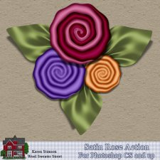 Satin Rose Action by Karen Stimson