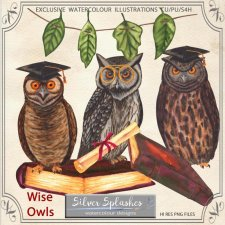 EXCLUSIVE Wise Owls Watercolour by Silver Splashes
