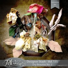 Designer Stash Vol 135 - Dry beauties No 2 by Feli Designs