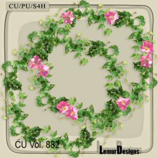 CU Vol 882 Frames by Lemur Designs