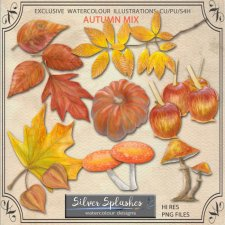 EXCLUSIVE Autumn Mix Watercolour by Silver Splashes