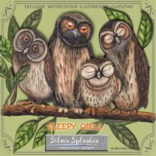 EXCLUSIVE Sleepy Owls Watercolour by Silver Splashes