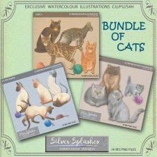 EXCLUSIVE Bundle of Cats watercolours by Silver Splashes