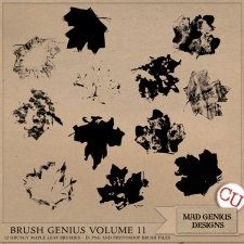 Brush Genius Volume Eleven by Mad Genius Designs