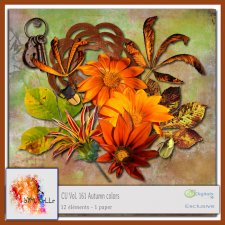 Vol 161 Autumn Elements EXCLUSIVE bymurielle