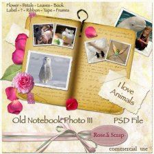 Old Notebook Photo III by Rose.li