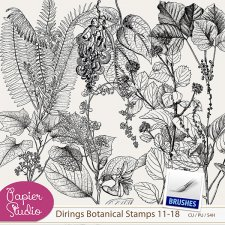Dirings Botanical Stamps Nr.2 by PapierStudio Silke