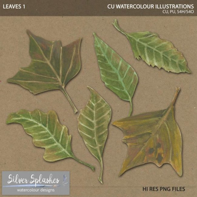 EXCLUSIVE Leaves 1 Watercolour by Silver Splashes