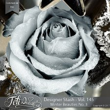 Designer Stash Vol 145 - Winter Beauties No 3 by Feli Designs
