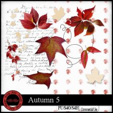 Autumn 5 elements Happy Scrap Art