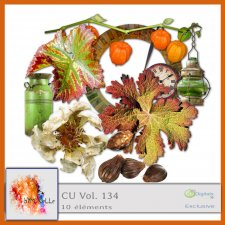 vol 134 Fall 3 Elements EXCLUSIVE bymurielle