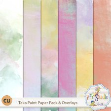 Teka Paint Paper Pack EXCLUSIVE by PapierStudio Silke