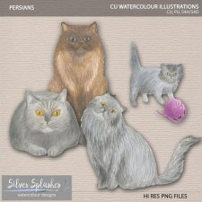 EXCLUSIVE Persians Watercolour by Silver Splashes