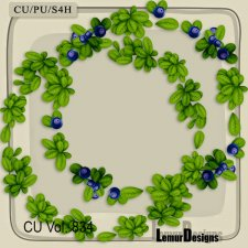 CU Vol 834 Frames by Lemur Designs