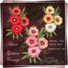 Action - Gerbera Corsage Flowers by Rose.li