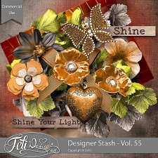 Designer Stash Vol 55 - CU by Feli Designs