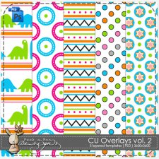 Overlay Pattern Paper Template 02 by Peek a Boo Designs