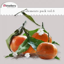Orange Bouquet Element Mix Vol 6 by Strawberry Designs