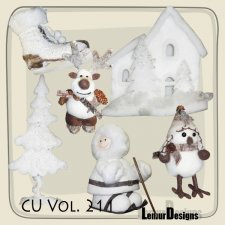 CU Vol 211 winter by Lemur Designs