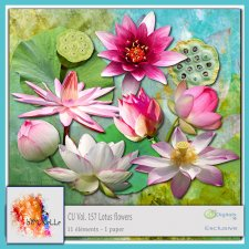 Vol 157 Lotus flowers Elements EXCLUSIVE bymurielle