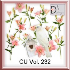 Vol. 232 Elements by Doudou Design