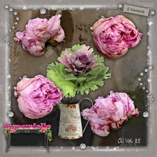FLOWER Peonies Vol 85 EXCLUSIVE byMurielle