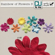 Rainbow of Flowers 3 - CUbyDay EXCLUSIVE
