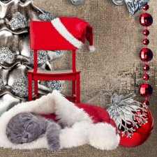 Vol. 827 christmas by Doudou Design