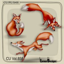 CU Vol 858 Fox by Lemur Designs