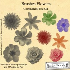 Brushes Flower by Cida Merola