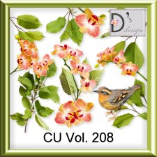 Vol. 208 Elements by Doudou Design