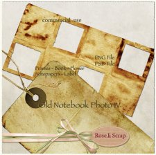 Old Notebook Photo IV by Rose.li