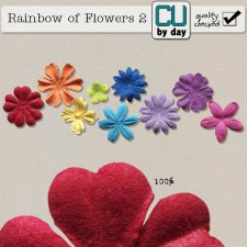 Rainbow of Flowers 2 - CUbyDay EXCLUSIVE