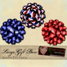 Large Gift Bow Action by Monica Larsen