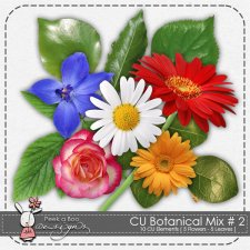 Botanical Mix 2 by Peek a Boo Designs